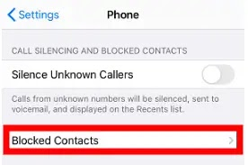 How to See Blocked Numbers on an iPhone?