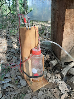Alat penampung madu kelulut