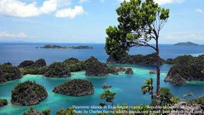 Piaynemo karst islets in Raja Ampat
