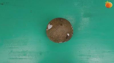Cách làm cốt dừa từ dừa nạo