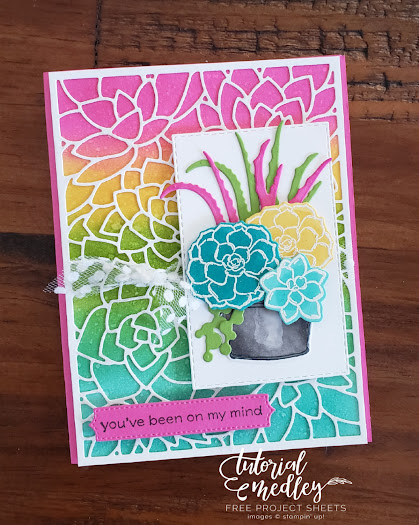 Tutorial Tuesday - Simply Succulents