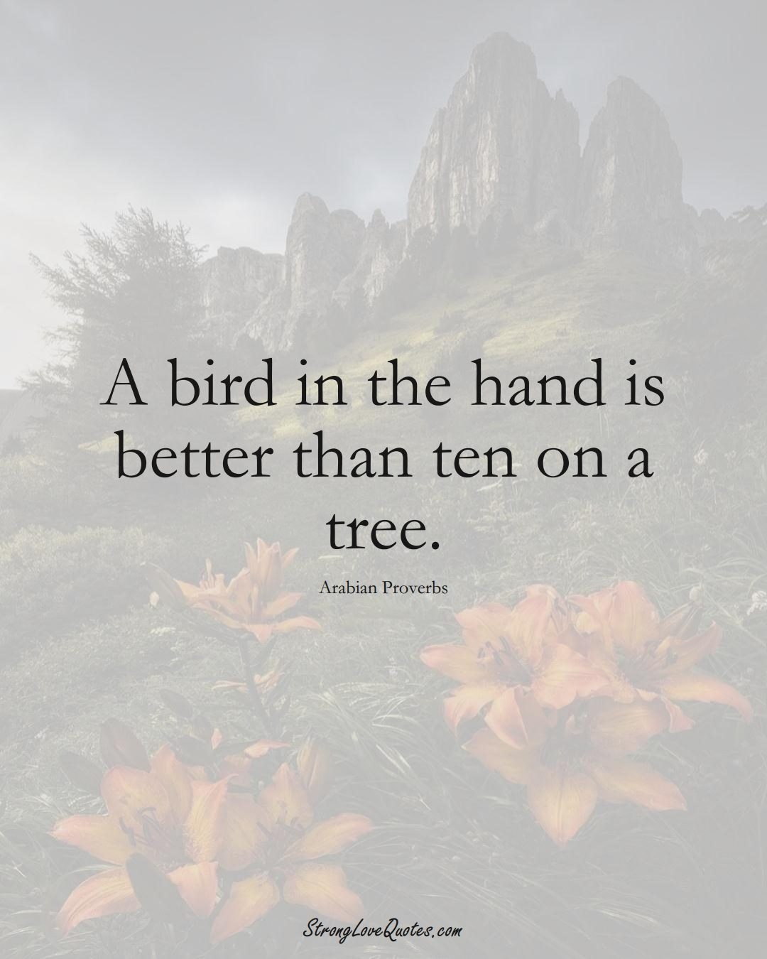 A bird in the hand is better than ten on a tree. (Arabian Sayings);  #aVarietyofCulturesSayings
