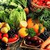 Έως 26 Οκτωβρίου οι φάκελοι για την πρώτη μεταποίηση αγροτικών προϊόντων