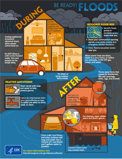 Mold Removal Chicago Water Damage Restoration Chicago