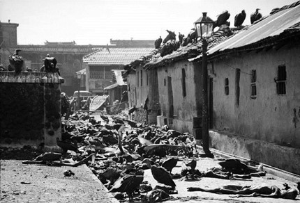 Image Attribute: Vultures feeding on corpses in the 1946 riots in Calcutta – an iconic pic by Margaret Bourke-White for Life magazine, courtesy Getty Images.