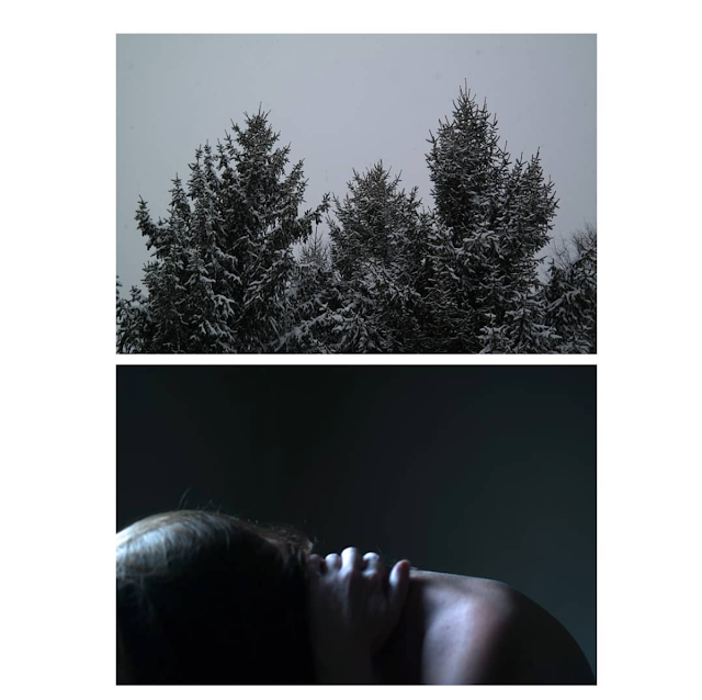 A vertical diptych, showing bristly evergreen trees (top) and a woman bent, clutching her neck (bottom).
