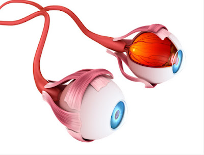 macular degeneration treatment chennai