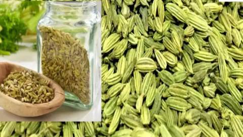 You will be shocked knowing the benefits of eating fennel, it cures major diseases