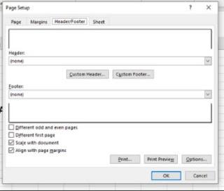 Page setup untuk mengubah file Excel ke PDF