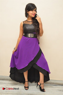 Telugu Actress Rachana Smith Stills at Money is Honey Audio Release  0053.jpg