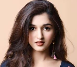 Nidhi Shah Family Husband Son Daughter Father Mother Marriage Photos Biography Profile.