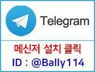 텔레그램 메신저