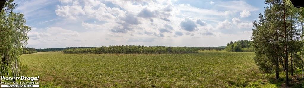 Widok na Durne Bagno w Poleskim Parku Narodowym