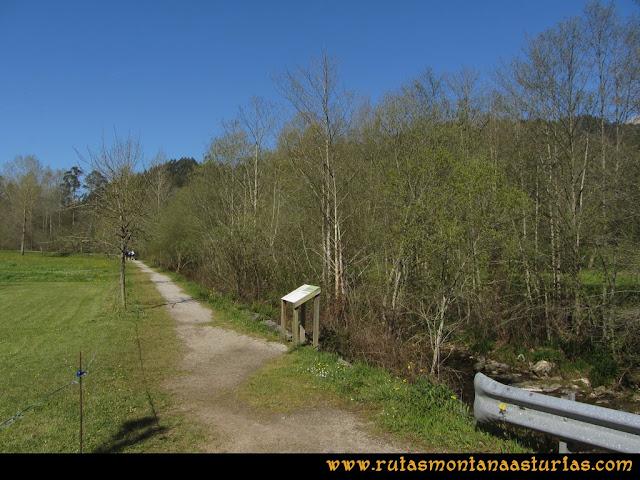 Camino Encantado Llanes: Camino junto al Río San Miguel