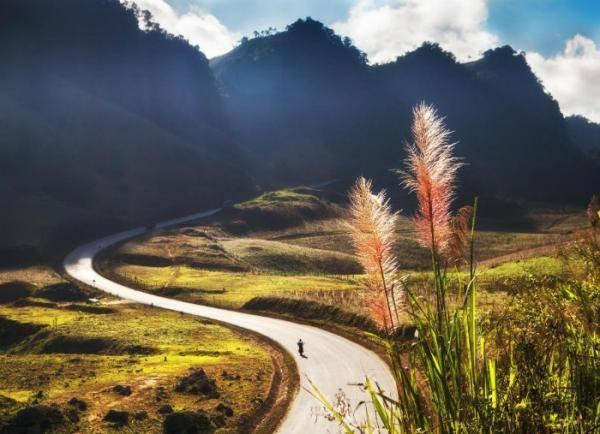 Sơn La: Tinh Khôi Vẻ đẹp Cao nguyên Mộc Châu