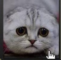اختر اكثر صورة حزينة لتعرف اكثر خفايا شخصيتك