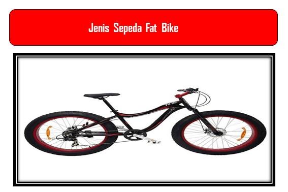 Jenis Sepeda Fat Bike