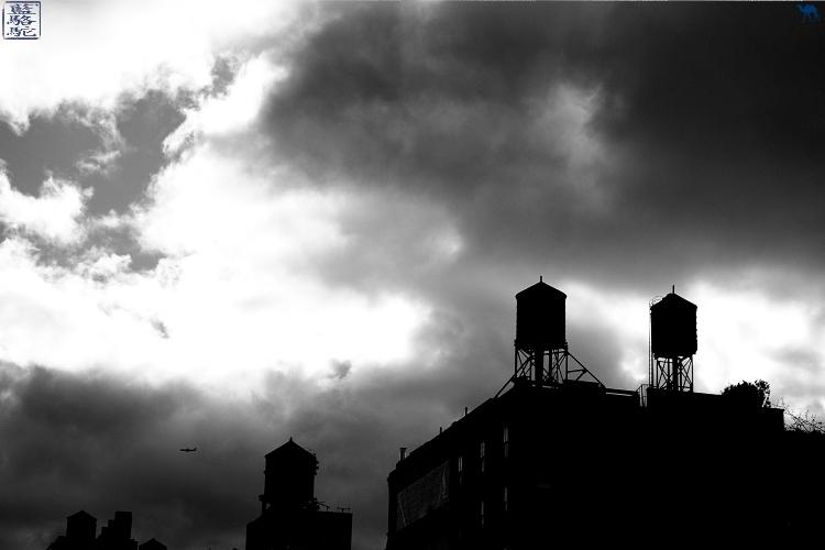 Le Chameau Bleu - Blog Voyage New York City Citernes à eau sur les toits de New York - USA