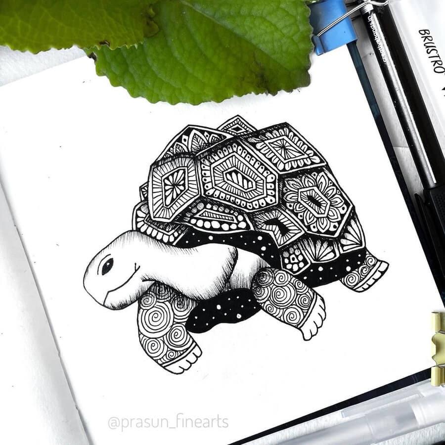 08-The-Tortoise-Prasun-Balasubramaniam-www-designstack-co