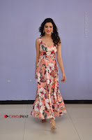 Actress Richa Panai Pos in Sleeveless Floral Long Dress at Rakshaka Batudu Movie Pre Release Function  0058.JPG