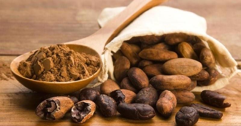 Mari Mengenal Buah Coklat, Koko |MyRokan  Mari Mengenal B...