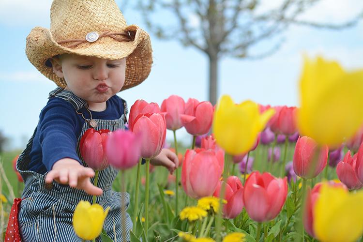 Ellis, the flower farmer | My Darling Days