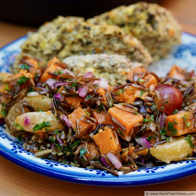 close up image of a plate of fruited wild rice salad with sweet potato