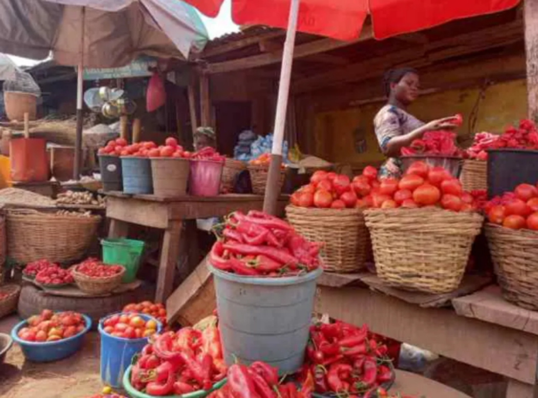 See The New Price of Pepper, Tomatoes and Onion in Ibadan, Oyo State