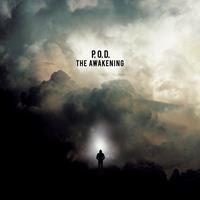 [2015] - Awakening