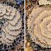 As abelhas são capazes de construir painéis com simetria perfeita e são 'arte pura'