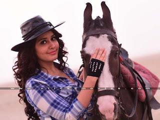 Rashi Khanna Stills from Supreme Movie