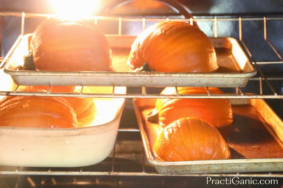 How to Freeze Your Pumpkins