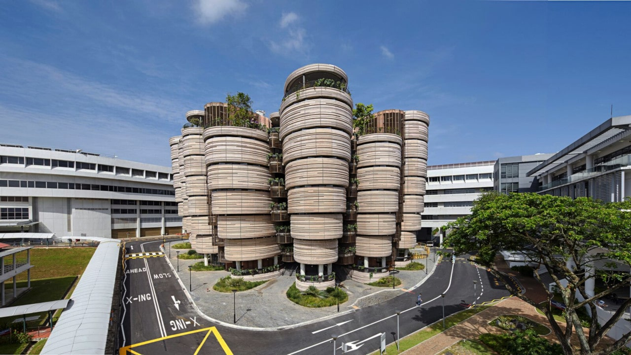 arquitectura organica, plataforma arquitectura