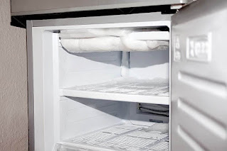 How to properly Defroze a refrigerator