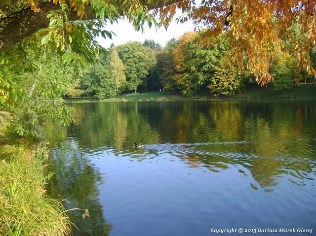 Jesień w Parku im. Adama Mickiewicza, zdjęcia Dariusz Marek Gierej