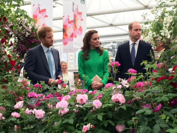 British royal family at rhs chelsea flower show newmyroyals hollywood fashion - Royal flower show ...