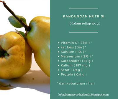 kandungan nutrisi buah quince