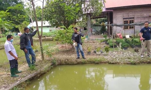 Tiga Anggota DPRD Gumas Salurkan Dana Aspirasi Benih dan Pakan Ikan