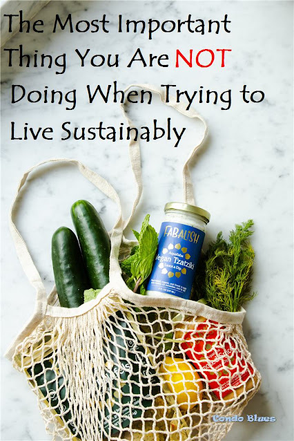 what you must do to live sustainably