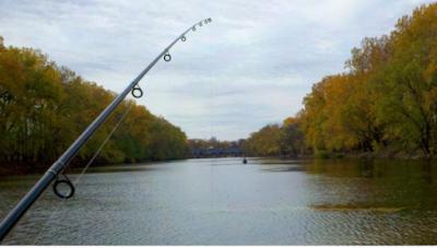 5 Cara Mancing Ikan Nila Yang Susah Makan dan Resep Umpannya!