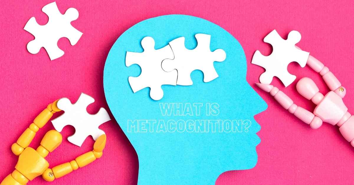 What Is Metacognition? How To Survive A Stressed Society - Moniedism