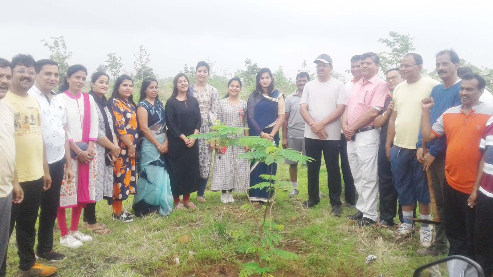 Jhabua News- हाथीपावा पर 1200 पौधों का एक साथ रोपण कर तीसरी वार्षिकी को बनाया गया ऐतिहासिक