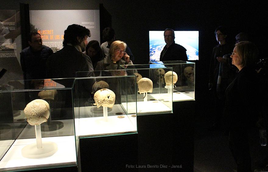 Cráneos de Puig Castellar y Ullastret, visita inaugural de la exposición 'Cabezas Cortadas. Símbolos de poder'. Foto: Laura Benito Díez - Jansá