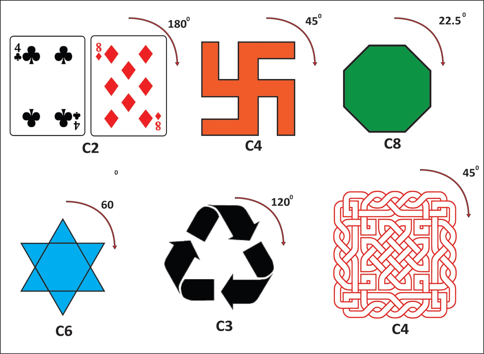 Symmetry In Nature Worksheet