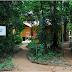 Aventure-se em uma imersão em floresta, sem internet e televisão
