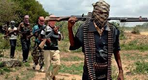 Police Confirm Abduction Of Traditional Ruler By Gunmen In Fct