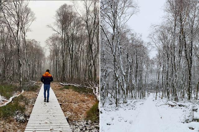 Snow in Belgium Mochamps Ardennes