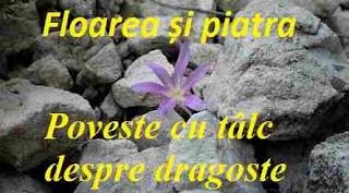 Floarea și piatra - Poveste cu tâlc despre dragoste