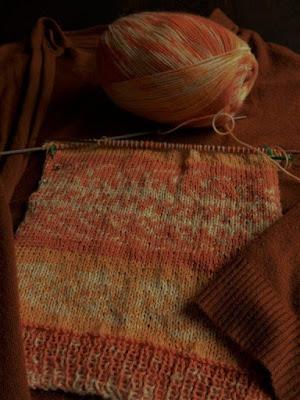 pro lana sokken wol