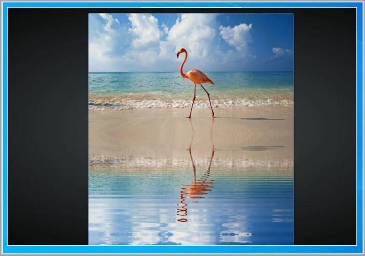 watereffect : Προσθέστε εφέ  κυματισμού στις  φωτογραφίες σας